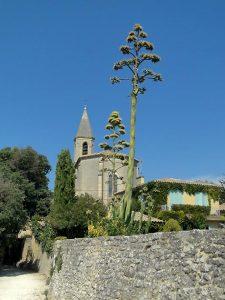 castillon du Gard, cp Provence Vacances